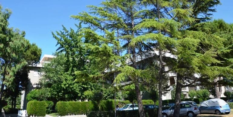 appartamento_2-camere_giardino_roseto_degli_abruzzi_rosburgo_immobiliare_2