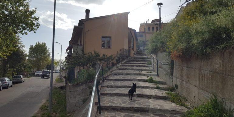 P01_rosburgo_immobiliare_pineto_via_di_sotto_6