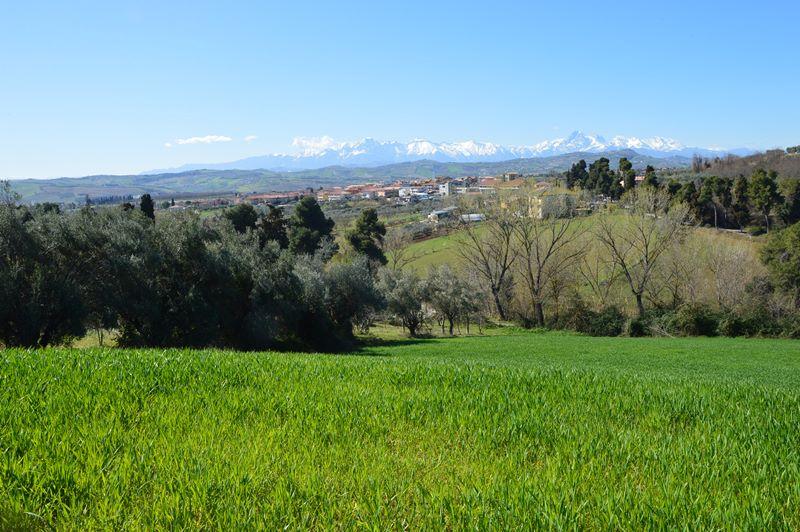 Casolare con terreno annesso in località Convento di Mosciano Sant'Angelo – R52D
