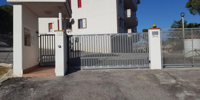 pineto_rosburgo_service_viale_dei_narcisi_P_05_17