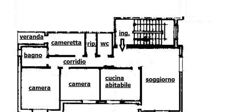pineto_rosburgo_service_viale_dei_narcisi_P_05_19