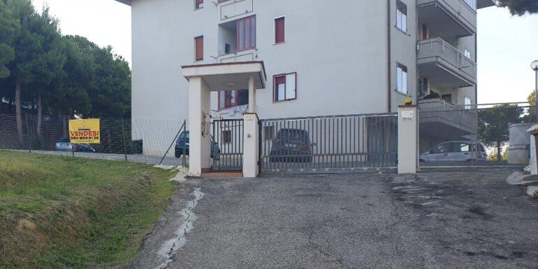pineto_rosburgo_service_viale_dei_narcisi_P_05_83