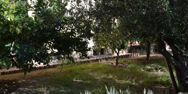 R37_via_Sangro_giardino2